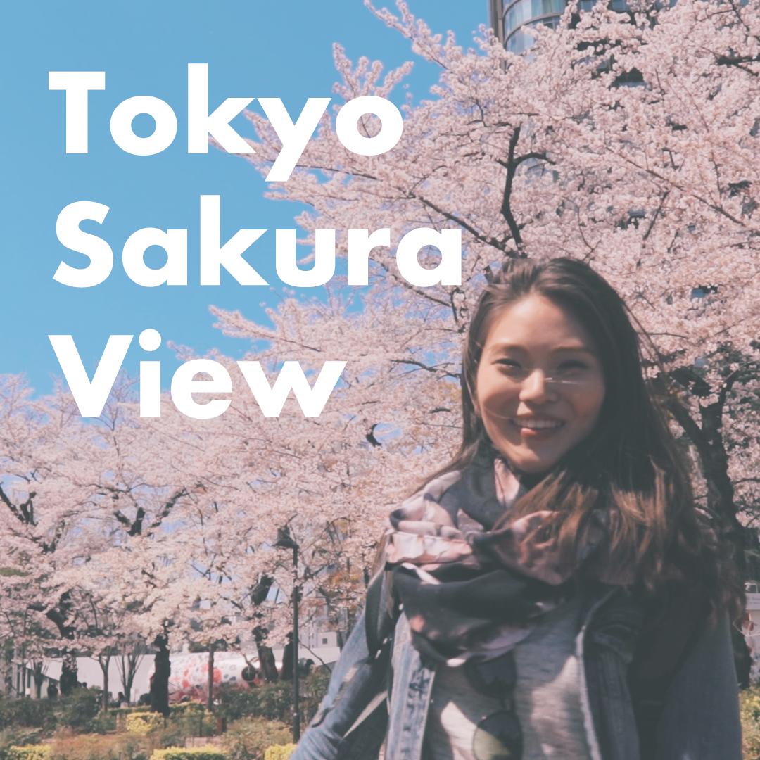 Tokyo Sakura View
